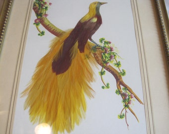 antique bird painting with real feathers
