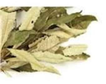 yerba santa leaves