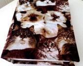 Cat lovers photo album 100 photos.