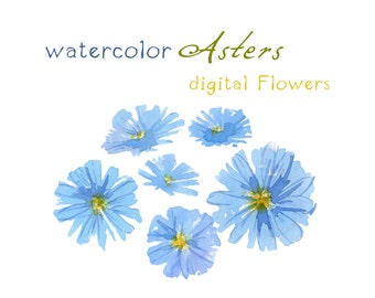 Digital Clipart, 6 Watercolor Flowers, Blue Asters