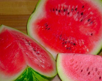 BEST SELLER* Sweet Dakota Rose watermelon Certified ORGANIC seed 1 packet (25 seeds)