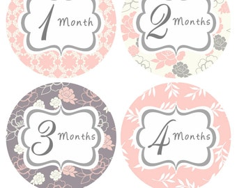 Monthly Baby Stickers Girl Baby Month Sticker INSTANT DOWNLOAD Pink Grey Floral Stickers Month Stickers Baby Shower Gift Photo Prop Mira-R