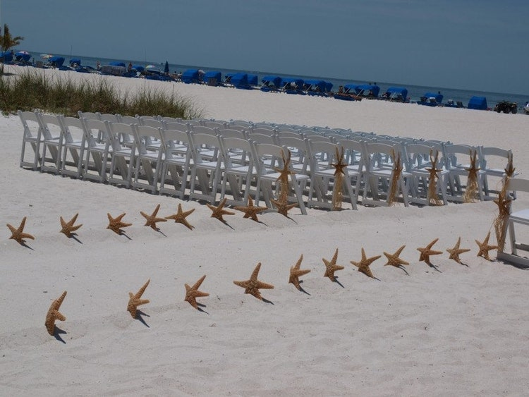 Starfish aisle way decorating kit for beach by