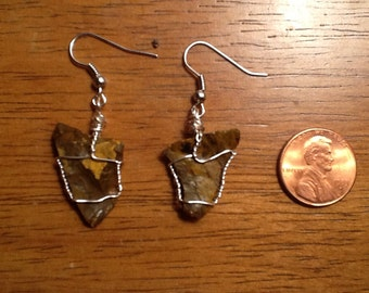 Petrified Wood Earrings wire wrapped Brown