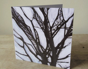 Art Card:  Old Trees in a New Light
