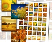 "Autumn Harvest Inchies 1 inch square Digital Collage Sheet 25.4mm 1x1 1"" square"