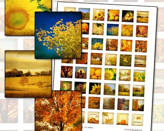 """Autumn Harvest Inchies 1 inch square Digital Collage Sheet 25.4mm 1x1 1"""" square"""