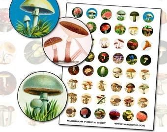 Antique Mushroom Toadstool 1 inch circle digital collage sheet 25mm round polka dot mushroom