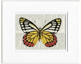 red yellow butterfly print