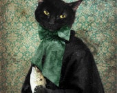 Black Cat Print Animal Photography Gifts for Veterinarians Pet Portrait Green Animal Art Gift for Cat Lovers - 8x10 Print - Lady Jigger