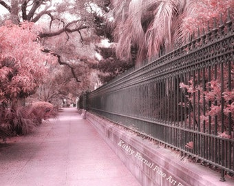 Savannah Photography, Dreamy Pink Savannah Georgia Nature Landscape Prints, Savannah Architecture Gate Prints, Romantic Savannah Street Art