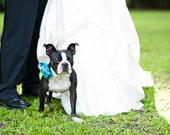 Romantic Satin Dog Collar Flower - Dog Wedding Accessory