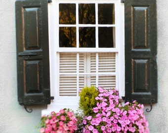 Flower Photography - Window Box in Charleston, Pink Floral Photograph, Romantic Wall Decor