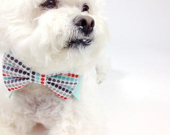 Dog bow tie and shirt collar-  mod dot print bow tie- more options- wedding bow tie for dogs- pet tie