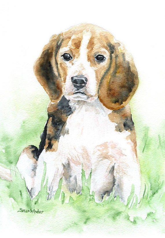 Beagle Watercolor Painting Giclee Print 8 x 10 - 8.5 x 11