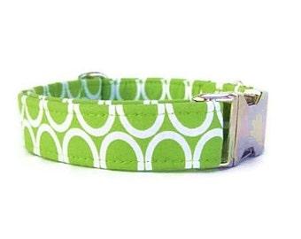 Designer Lime Green Dog Collar - Circles On Lime - Nickel Hardware