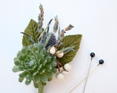 Succulent Boutonniere with Lavender, Thistle, and Tallow Berry