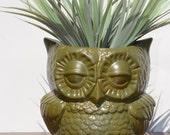 Vintage Ceramic Owl Planter Vase Home Decor , Moss Green