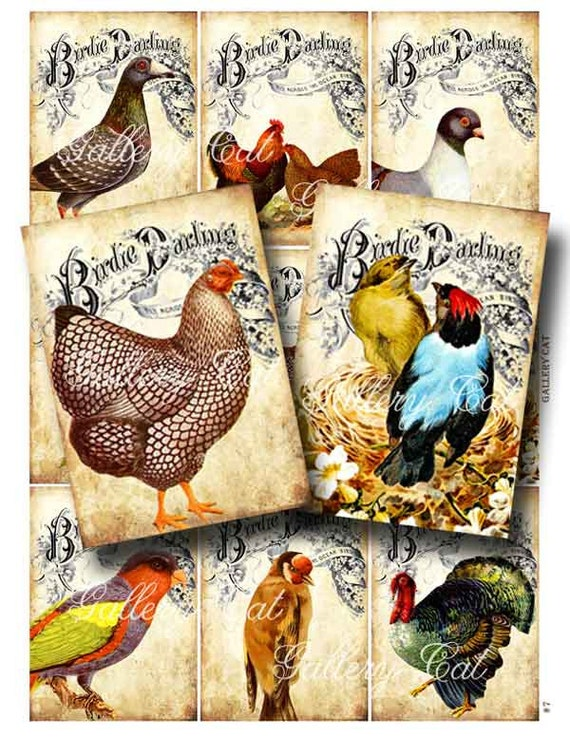 Vintage Birds on Old Song Book Digital Collage Sheet Print It Yourself Paper Crafts Instant Download Gallery Cat CS7