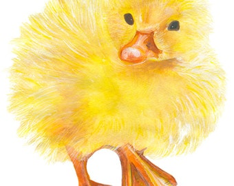 ducky watercolor print signed by artist Stephanie Kriza