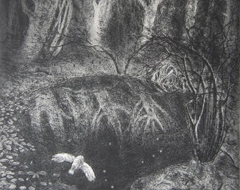 Leaves and stars, etching by Flora McLachlan, reflections, owl, pool, woodland, forest, dark, night, autumn, water