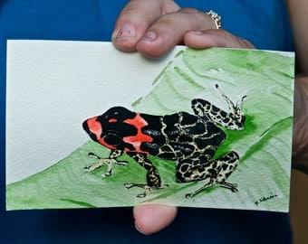 Poison Dart Frog Watercolor Postcard