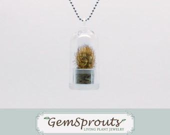 Valentines Day Sale - Real Living Tiny Texas Windowsill Cactus Plant Dome Necklace with Ballchain