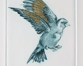 Fine art Bird print. Goldfinch drypoint. Blue with gold tissue