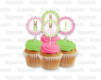 Printable DIY Pink and Green Bunny Rabbit Theme Girl Personalized Birthday Cupcake Toppers Digital File