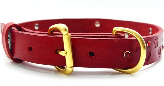 Dog Wedding Collar Uk