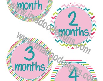 Baby Girl Onesie Stickers - Month Stickers 1 to 12