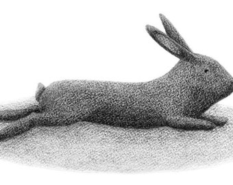 Relaxing Rabbit - 4x6 print