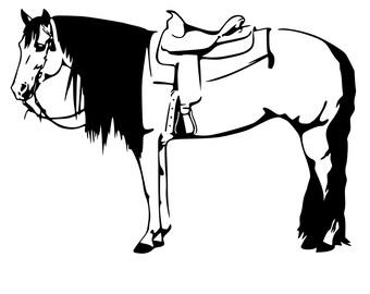 Horse decal-Western Horse-Buckskin Horse Decal- 27x19 inches- wall decor,262-HS.