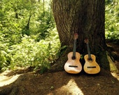 "Guitars and a Tree, Nature Photograph, Tully Lake, Massachusetts, 9"" x 12"""