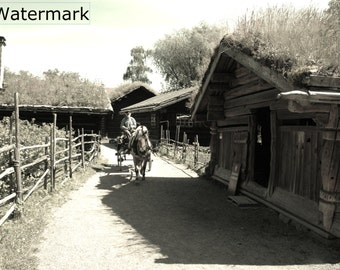 Old Norse Farm and Farmer Photo