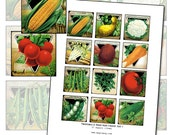 Antique Vegetable & Herb Seed Packet Art I 2x2 inch digital collage sheet 50mm x 50mm square