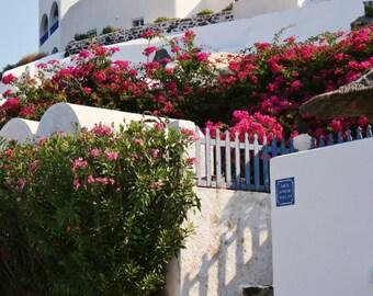 Santorini Greece Photography - Fuschia Flowers Photograph - Blue Gate - Travel Photo - Greek Wall Art Travel Print Home Decor White