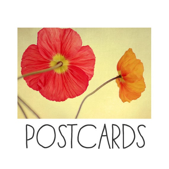 Postcards - Single Card - Blank Cards - Les Jolies Fleurs- Water - Flower Photograph - Poppies - Spring