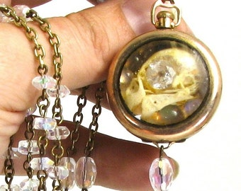 Ossuary Relic Steampunk Parakeet Skull Reliquary Necklace with Rainbow Moonstone and Citrine Housed in Victorian Pocket Watch Case