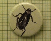 "Cockroach 1.5"" Pinback Button"