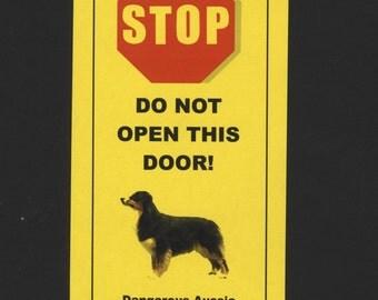 Dangerous Australian Shepherd Inside - Has Killed Squeaky Toy