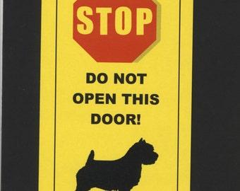 Dangerous Norfolk Terrier Inside - Has Killed Squeaky Toy