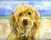 custom dog portraits | pet portraits in watercolor| custom portrait