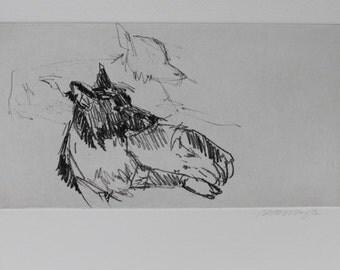 Border Collie Sketchbook Down Stay - Original etching by Nicole Strasburg