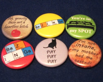 The Big Bang Theory Pinback Button