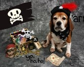 Skull and crossbone with red feather,  black pirate hat for dog, perfect for Halloween