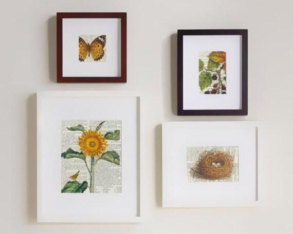 Set of Four Prints