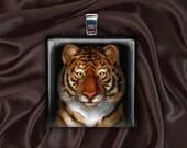 Tiger Glass Tile Pendant Necklace