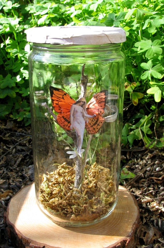 Woodland Butterfly Fairy in a Jar - Tall