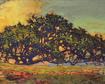 New - Oak Over The Hill - Giclee Fine Art PRINT of Original Painting matted 12x20 by Jan Schmuckal